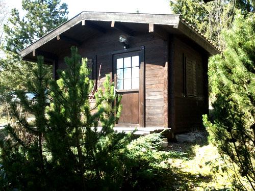 Массивный бревенчатый домик