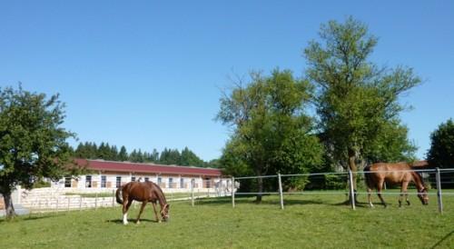 Конный двор в Германии