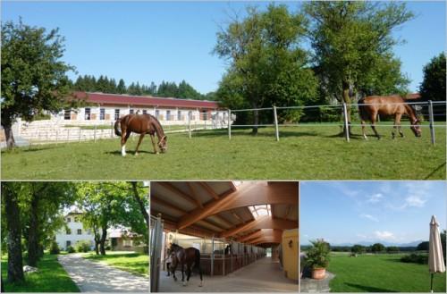 Продаётся конный центр в Германии, конный двор с особняком в Германии, Бавария