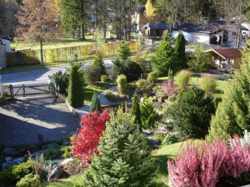 Вид сада, придомовая территория виллы