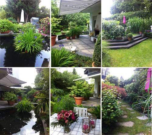 Вилла в Германии -сад с ландшафтным дизайном, пруд, террасы